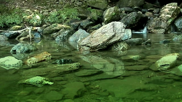 fresh water in mountain forest - anamorphic stock videos & royalty-free footage