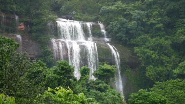 fresh  waterfall in forest
