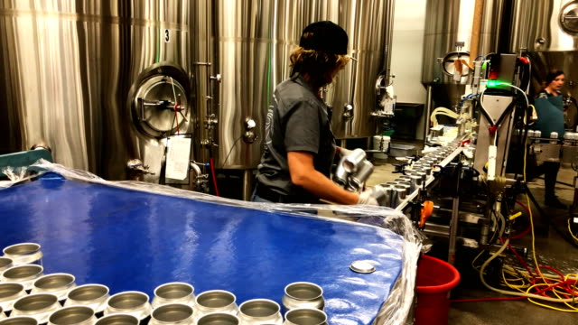 freshly canned beers move on an assembly line at devil's canyon brewery on june 6, 2018 in san carlos, california. new tariffs imposed by u.s.... - 缶詰にする点の映像素材/bロール