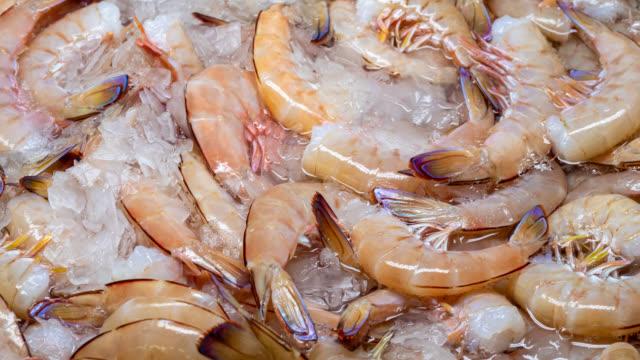 freshly caught australian prawns - seafood stock videos & royalty-free footage