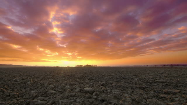 ds freshly plowed field at dawn - plowed field stock videos and b-roll footage