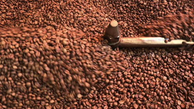 freshly roasted coffee beans - cereal plant stock videos & royalty-free footage