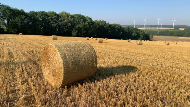 freshly rolled hay bale in a hay field - bale stock videos & royalty-free footage
