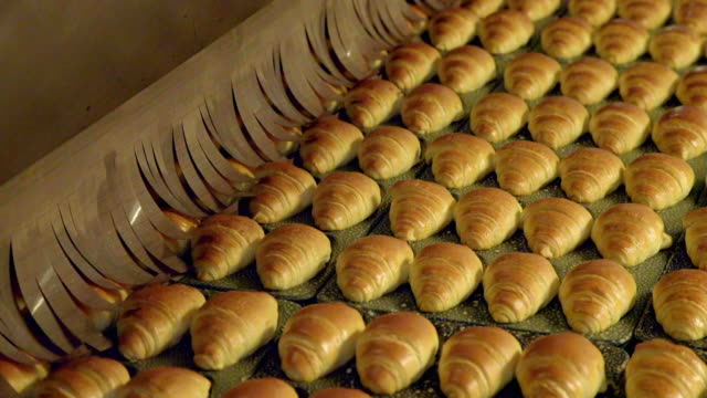 freshly-baked croissants leave factory oven - in a row stock videos & royalty-free footage