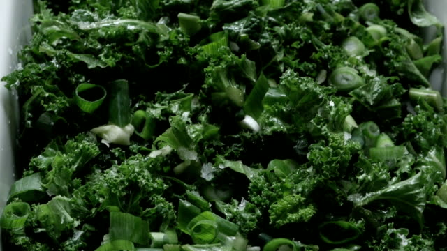 freshness kale - crucifers stock videos and b-roll footage