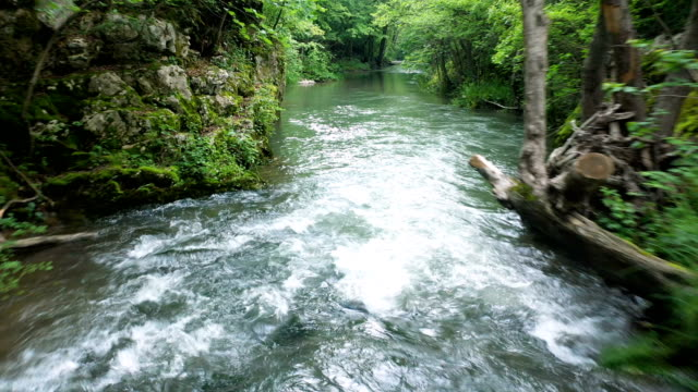 frische - spring flowing water stock-videos und b-roll-filmmaterial