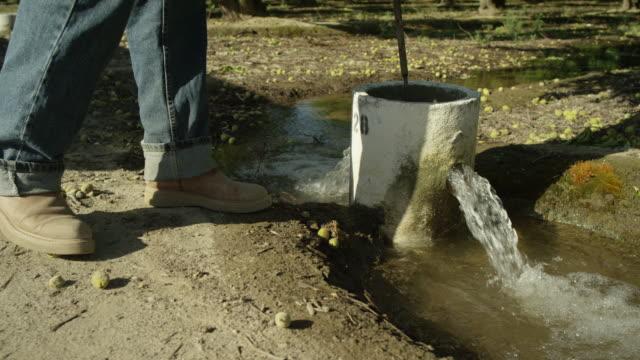 vídeos y material grabado en eventos de stock de fresno, california - equipos de riego
