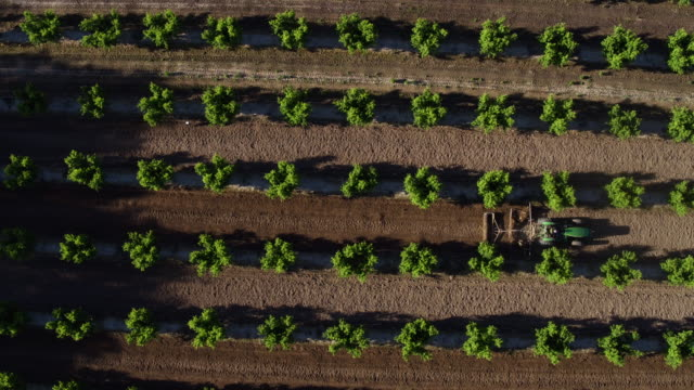 fresno, california - agricultural equipment stock videos and b-roll footage