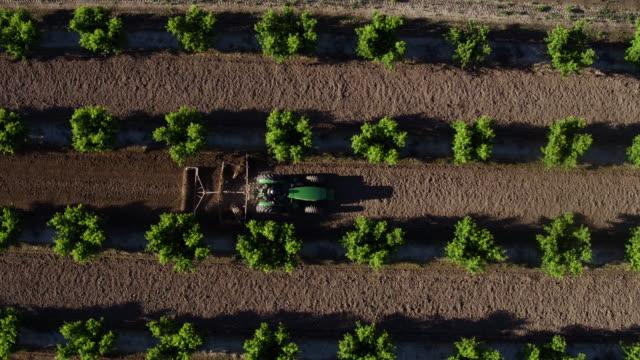 vidéos et rushes de fresno, california - fresno