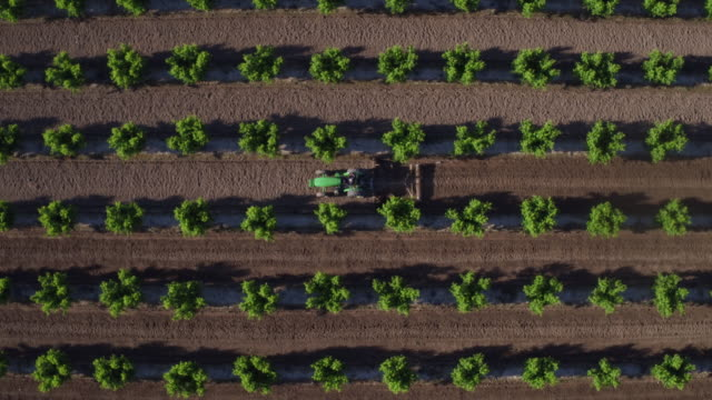 stockvideo's en b-roll-footage met fresno, california - tractor