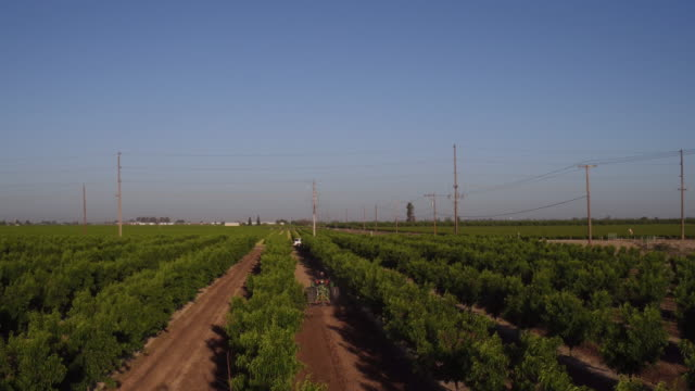 fresno, california - telegraph pole stock videos and b-roll footage