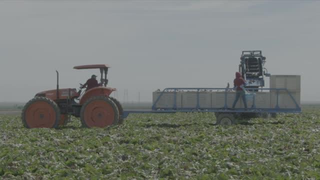 vídeos de stock, filmes e b-roll de fresno farming - fresno