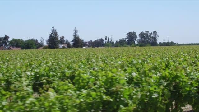 vidéos et rushes de fresno farming - fresno
