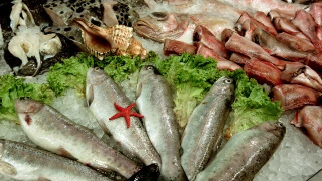 Koelkast met zeevruchten in de supermarkt