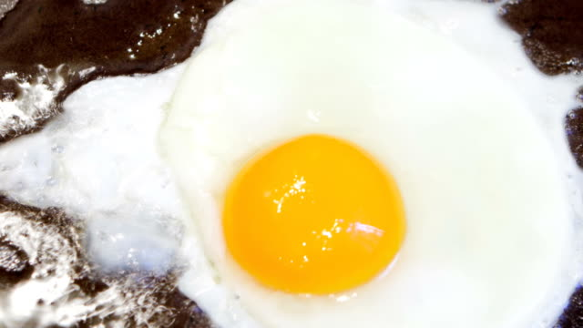 fried egg time lapse - roast dinner stock videos & royalty-free footage