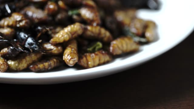 Fried larvae on street food market in Thailand, close up