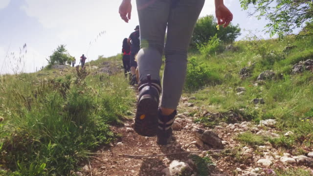 friends and dog hiking in italian apennines mountains - trail ride stock videos and b-roll footage