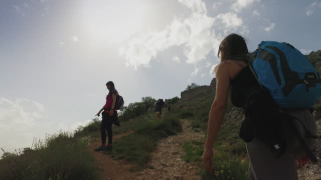 friends and dog hiking in italian apennines mountains - recreational horseback riding stock videos and b-roll footage