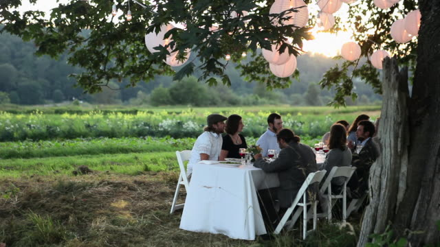 R/F WS Friends and family dining outside in field under tree with lanterns at sunset/Washington, USA