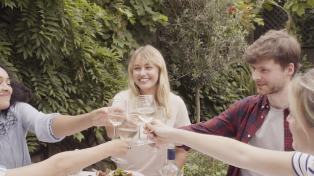 Friends are  toasting with wineglasses at dinner party, outdoors.