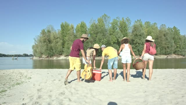 friends at the beach - picnic basket stock videos and b-roll footage
