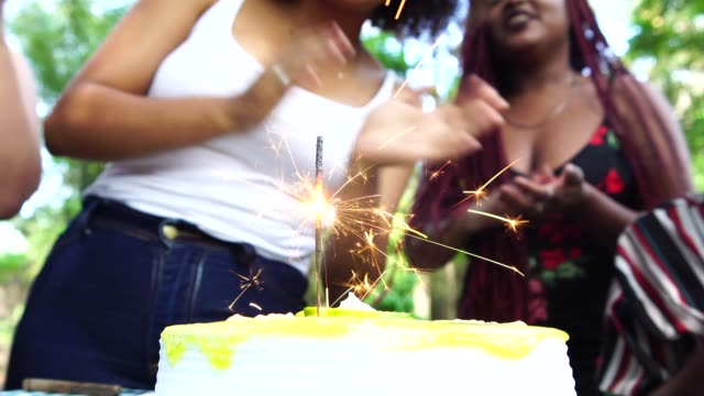 friends celebrating a birthday party at the park - pardo brazilian stock videos & royalty-free footage