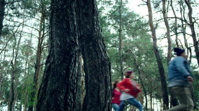vídeos de stock, filmes e b-roll de amigos que perseguem na floresta - brincadeira de pegar