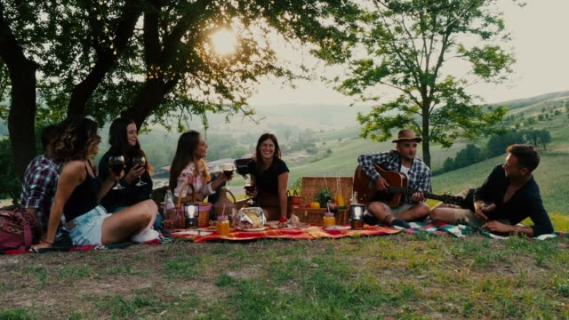 friends doing a picnic together at sunset in the countryside - picnic video stock e b–roll