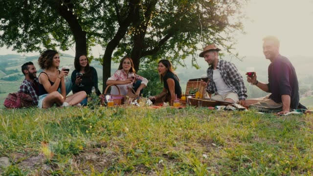 friends doing a picnic together at sunset in the countryside - aperitivo video stock e b–roll