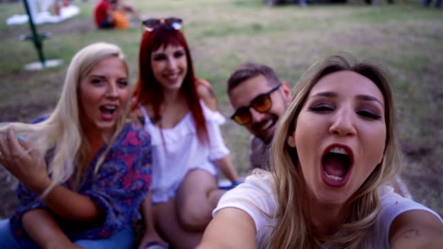 friends enjoying a day in the park - picnic stock videos & royalty-free footage