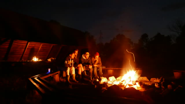 friends enjoying bonfire. summer activities - brown stock videos & royalty-free footage