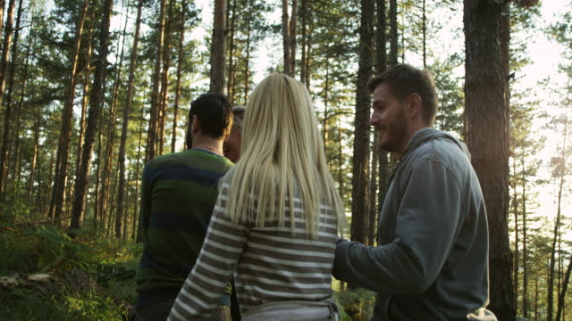 friends enjoying in nature - woodland stock videos & royalty-free footage