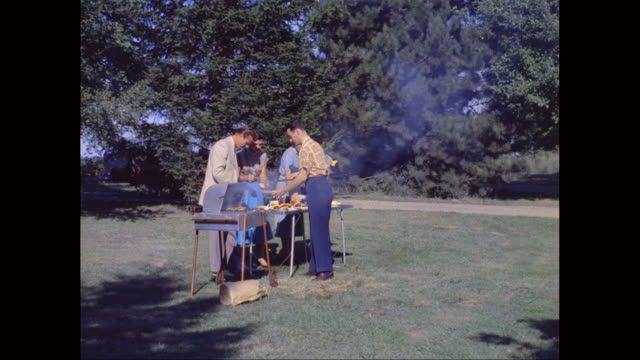 ws friends enjoying picnic in park / united states - picknick stock videos and b-roll footage