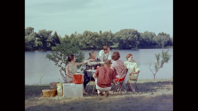 vídeos de stock e filmes b-roll de ws pan friends enjoying picnic near lake / united states - picnic