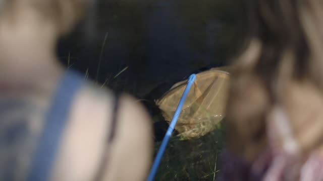 friends fishing in river - 北チロル点の映像素材/bロール