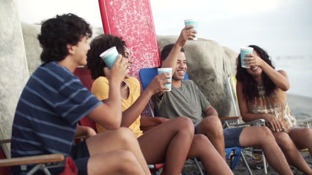 friends hanging out at the beach - 25 29 jahre stock-videos und b-roll-filmmaterial