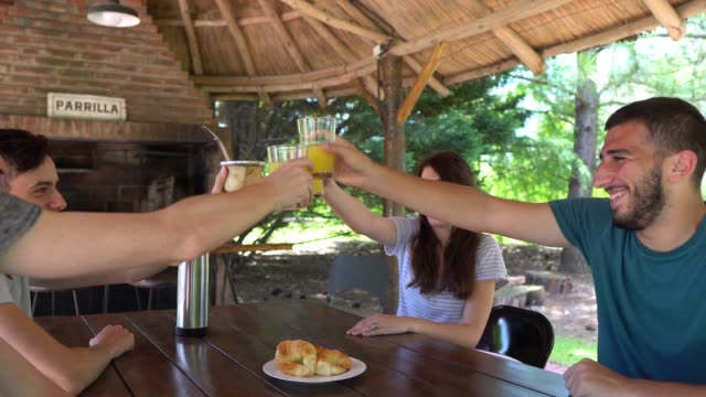 friends having a break in the countryside together drinking juices - argentinian culture stock videos & royalty-free footage