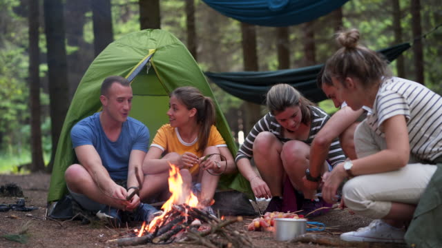 friends having a good time around campfire - 20 24 years stock videos & royalty-free footage