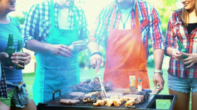 Friends having barbecue party, 4k.
