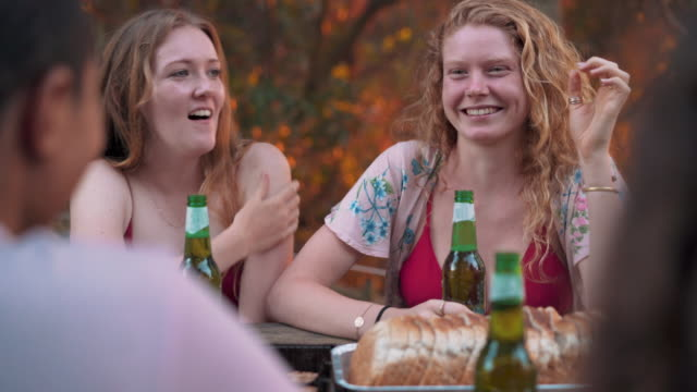 friends having barbecue party in a park - australia stock videos & royalty-free footage