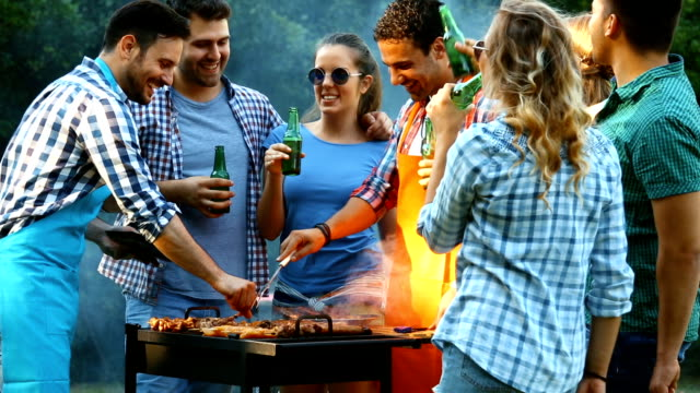 friends having barbecue party. - picnic stock videos and b-roll footage