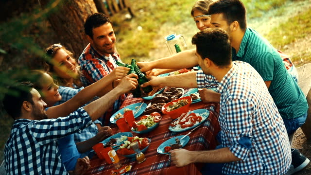 friends having garden party. - table top view stock videos & royalty-free footage