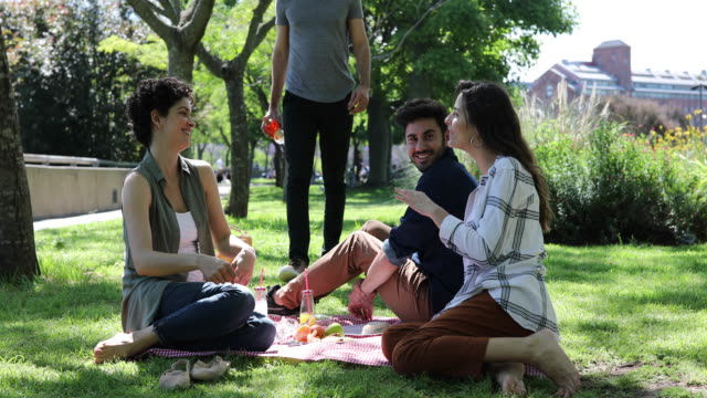 friends having picnic at park - carrying stock videos & royalty-free footage