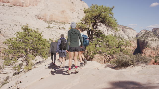 friends hiking along cliff in utah - zion national park stock videos & royalty-free footage