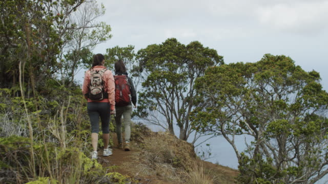 friends hiking in hawaii's na pali coast - state park stock videos & royalty-free footage
