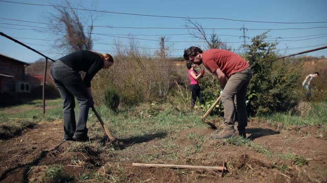 friends hoeing the soil - community garden stock videos & royalty-free footage