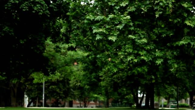 ご友人とのジャンプパーク - public park点の映像素材/bロール