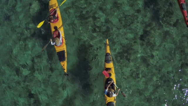 friends kayaking, aerial view - leisure activity stock videos & royalty-free footage