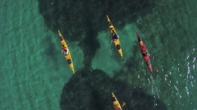 friends kayaking, aerial view - カヤック点の映像素材/bロール