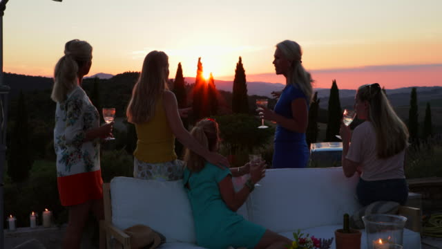 friends looking at the sunset - wine stock videos & royalty-free footage